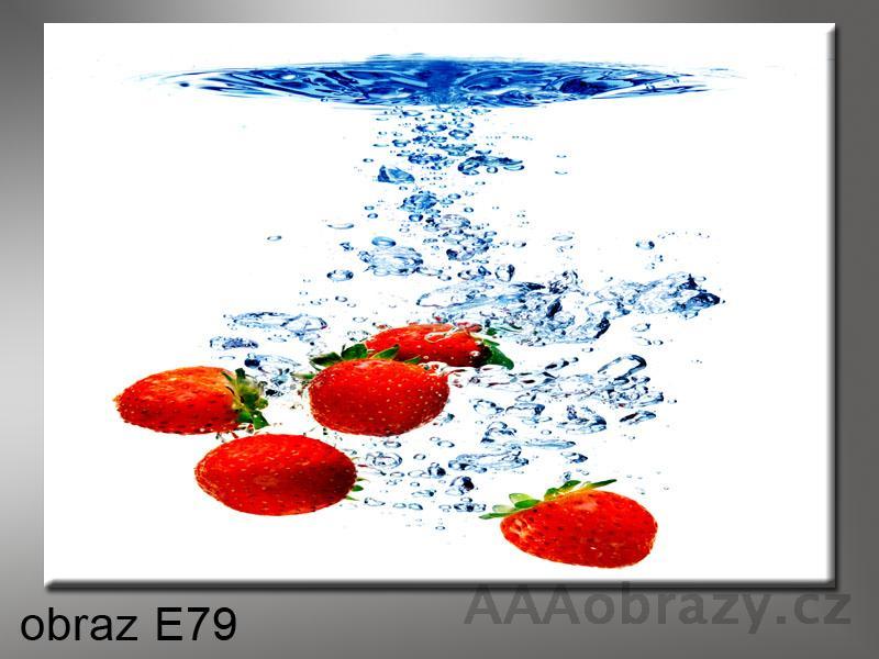 Moderní obraz do bytu 1D 70x50cm E-79