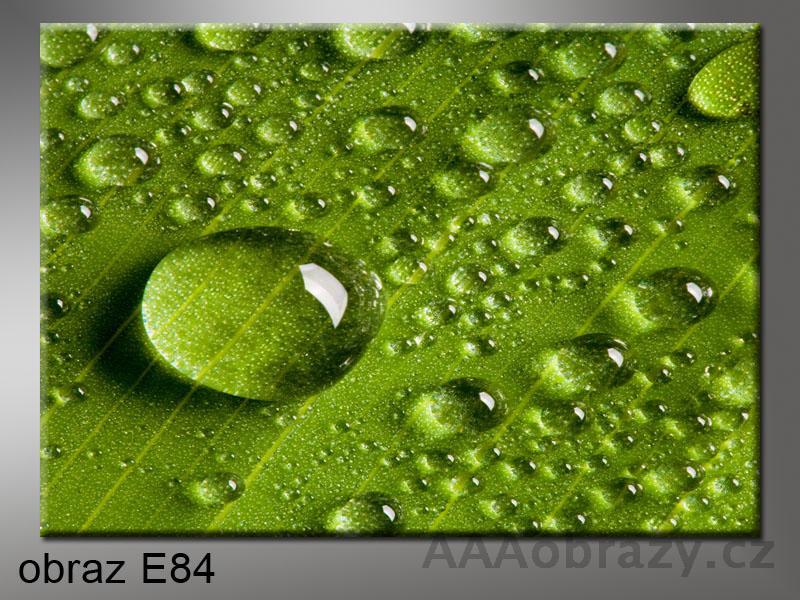 Moderní obraz do bytu 1D 70x50cm E-84