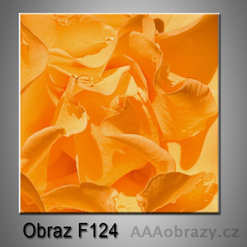 Moderní obraz do bytu 1D 25x25cm F-124