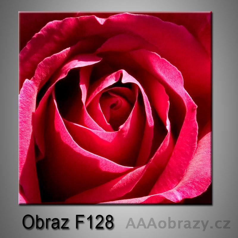 Moderní obraz do bytu 1D 25x25cm F-128