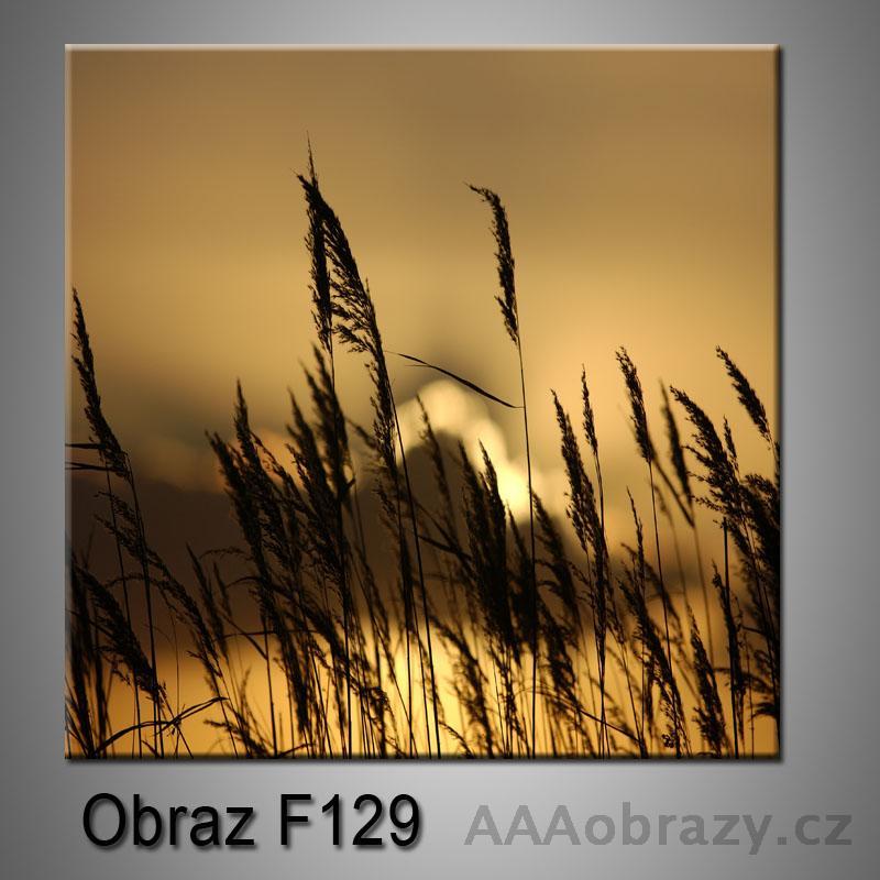 Moderní obraz do bytu 1D 25x25cm F-129