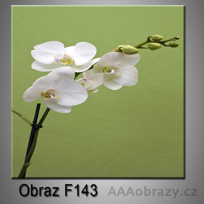 Moderní obraz do bytu 1D 25x25cm F-143