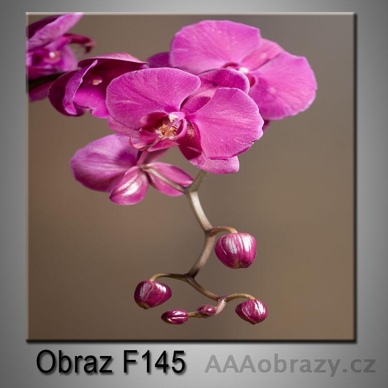 Moderní obraz do bytu 1D 25x25cm F-145