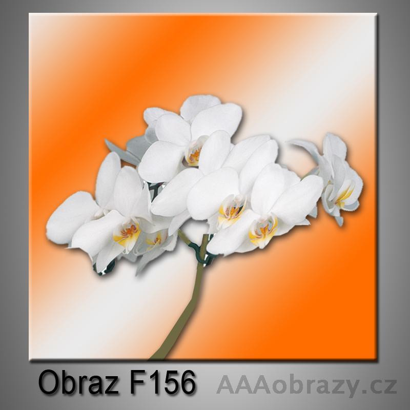 Moderní obraz do bytu 1D 25x25cm F-156