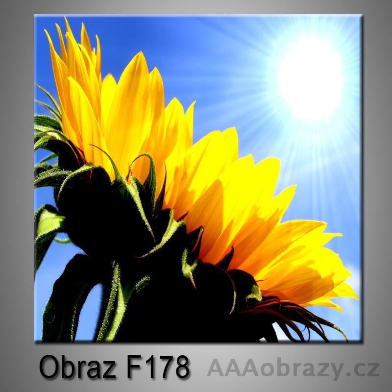 Moderní obraz do bytu 1D 25x25cm F-178