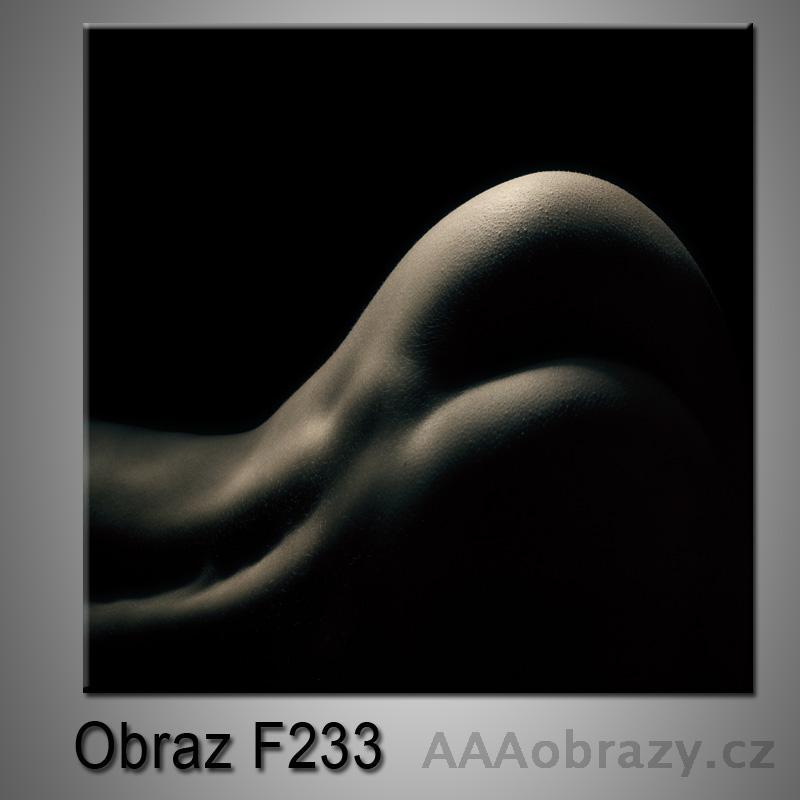 Moderní obraz do bytu 1D 25x25cm F-233
