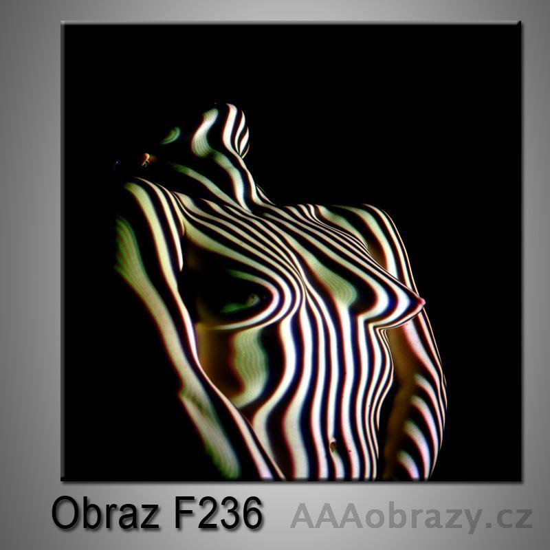 Moderní obraz do bytu 1D 25x25cm F-236
