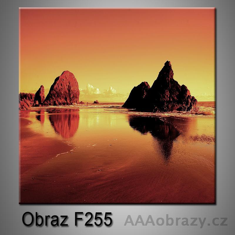 Moderní obraz do bytu 1D 25x25cm F-255
