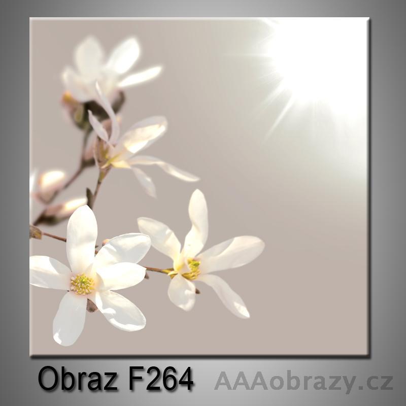 Moderní obraz do bytu 1D 25x25cm F-264