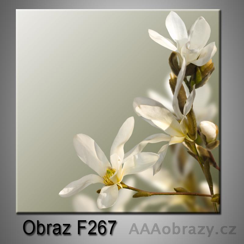 Moderní obraz do bytu 1D 25x25cm F-267
