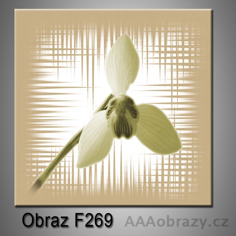 Moderní obraz do bytu 1D 25x25cm F-269