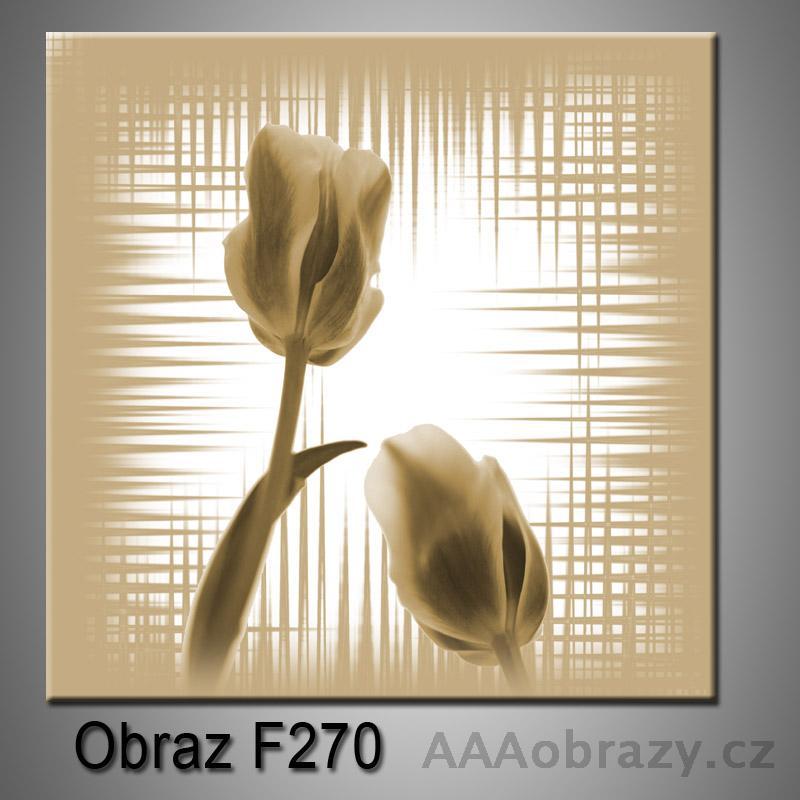 Moderní obraz do bytu 1D 25x25cm F-270
