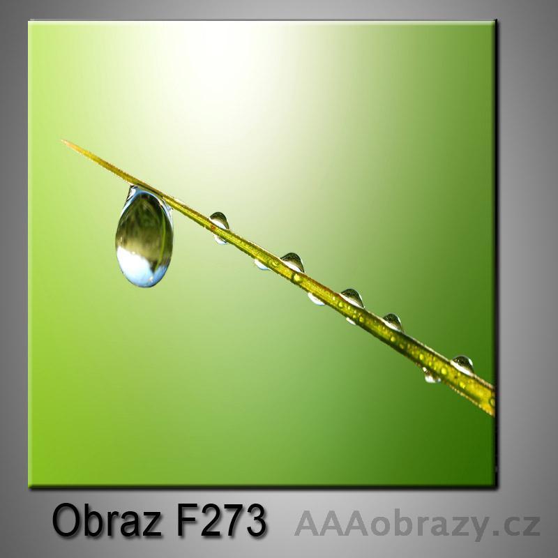 Moderní obraz do bytu 1D 25x25cm F-273