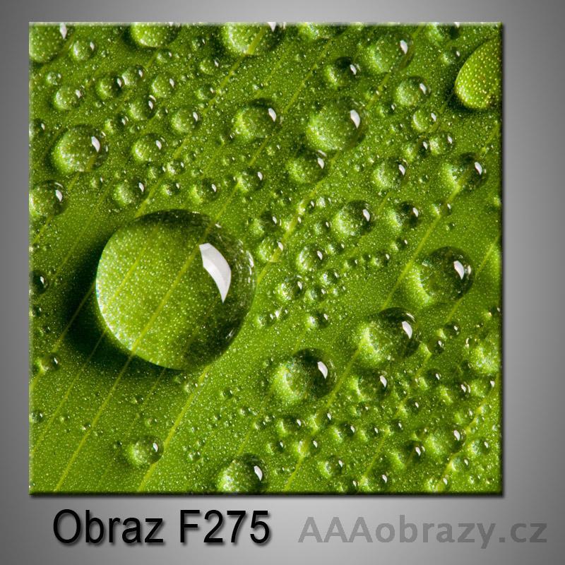 Moderní obraz do bytu 1D 25x25cm F-275