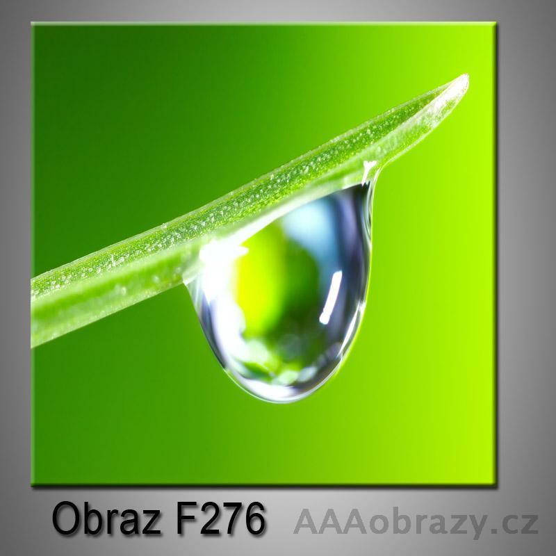 Moderní obraz do bytu 1D 25x25cm F-276