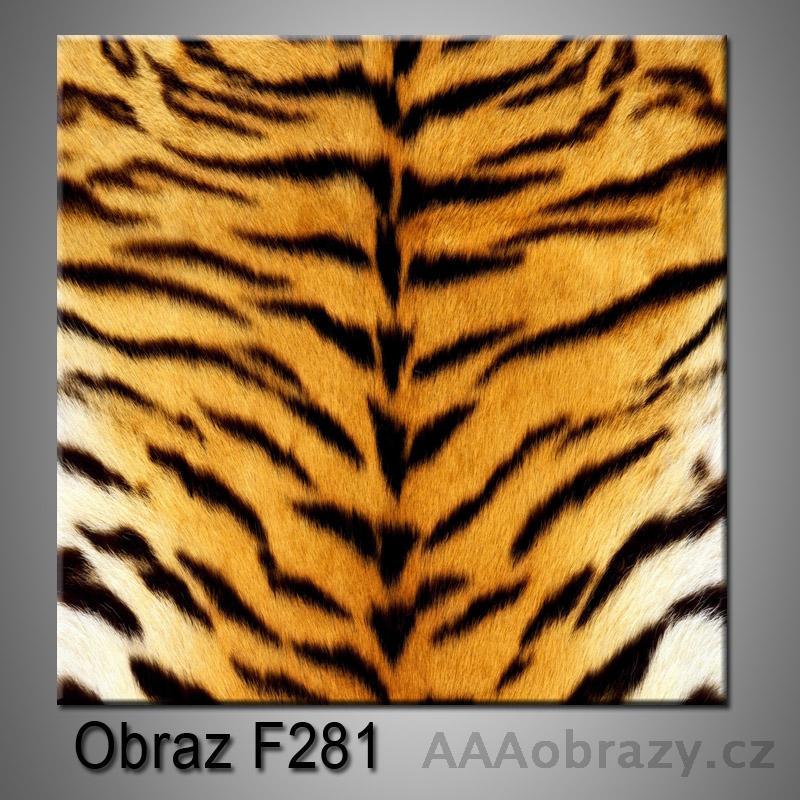 Moderní obraz do bytu 1D 25x25cm F-281
