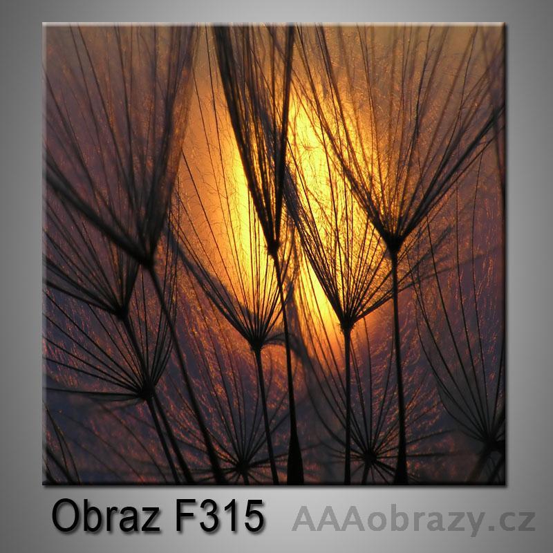 Moderní obraz do bytu 1D 25x25cm F-315