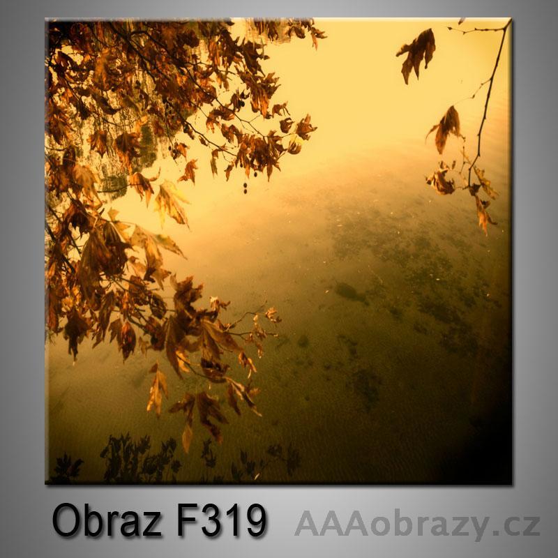 Moderní obraz do bytu 1D 25x25cm F-319