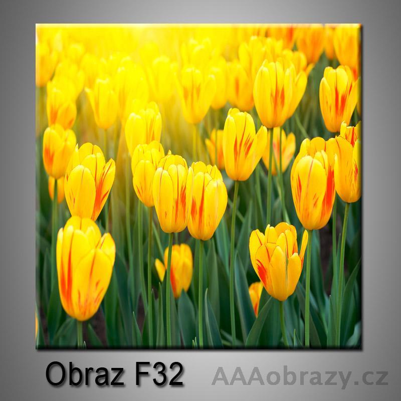 Moderní obraz do bytu 1D 25x25cm F-32