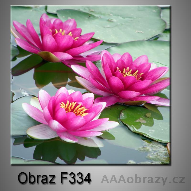 Moderní obraz do bytu 1D 25x25cm F-334