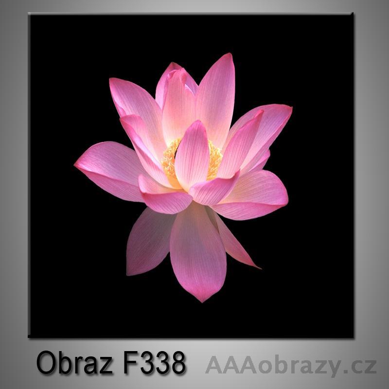 Moderní obraz do bytu 1D 25x25cm F-338