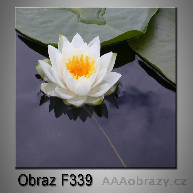 Moderní obraz do bytu 1D 25x25cm F-339