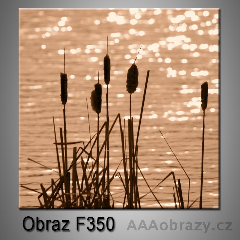 Moderní obraz do bytu 1D 25x25cm F-350