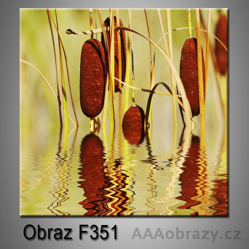 Moderní obraz do bytu 1D 25x25cm F-351