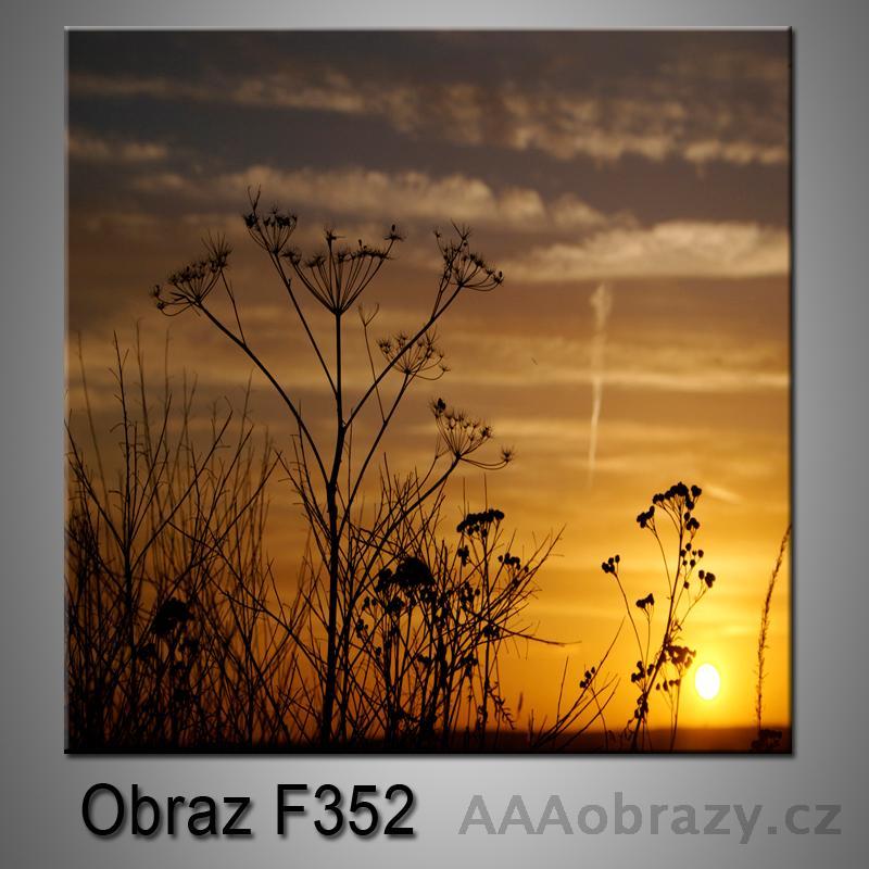 Moderní obraz do bytu 1D 25x25cm F-352