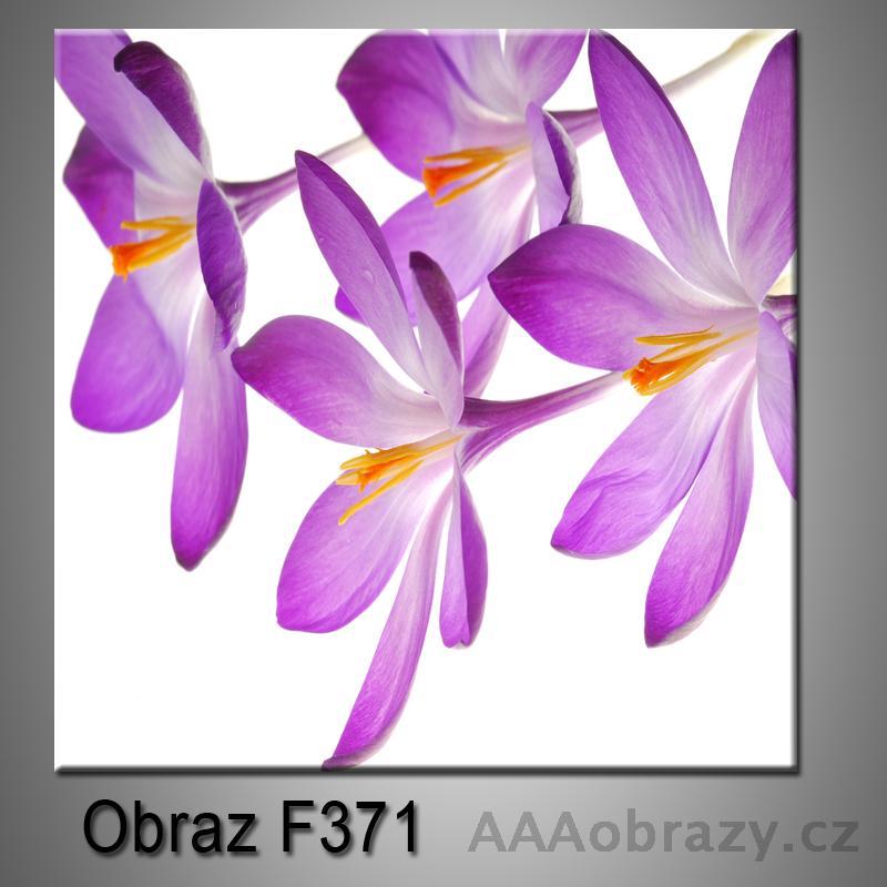 Moderní obraz do bytu 1D 25x25cm F-371