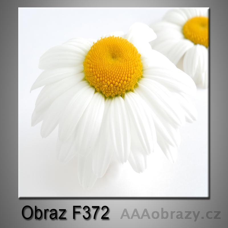 Moderní obraz do bytu 1D 25x25cm F-372