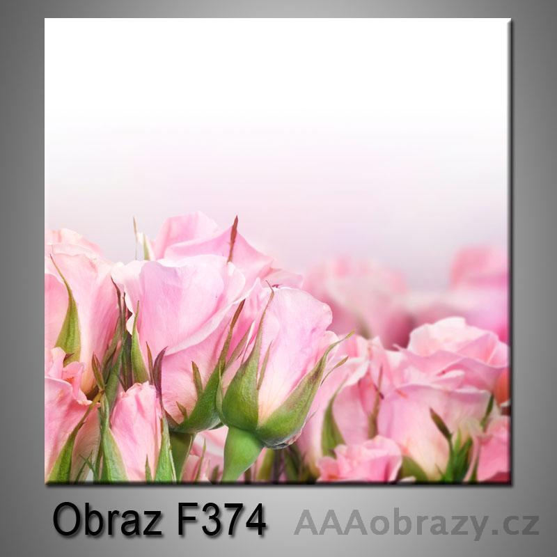 Moderní obraz do bytu 1D 25x25cm F-374