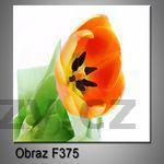 Moderní obraz do bytu 1D 25x25cm F-375