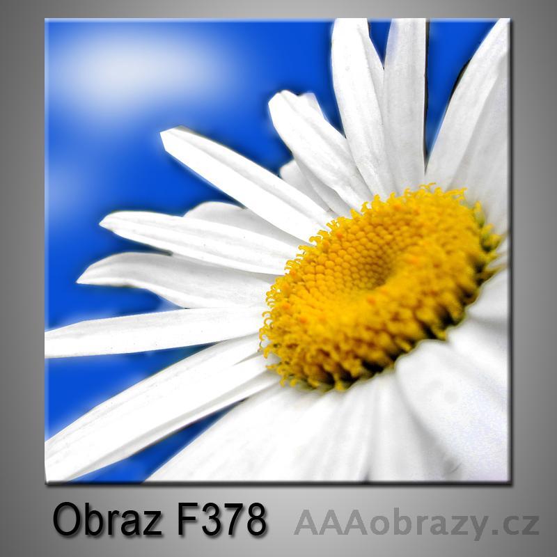 Moderní obraz do bytu 1D 25x25cm F-378