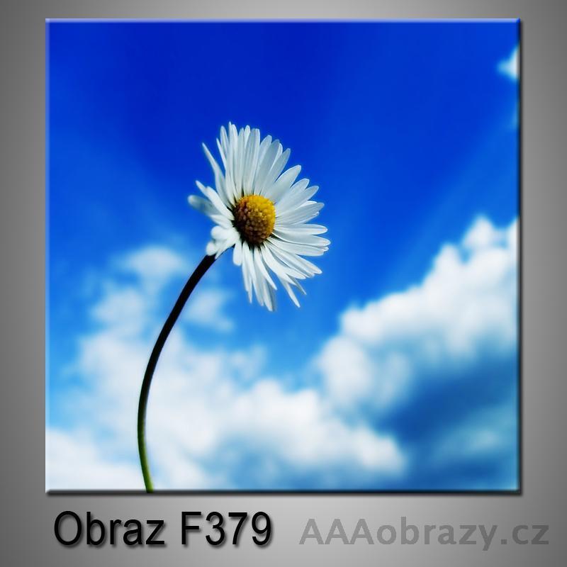 Moderní obraz do bytu 1D 25x25cm F-379