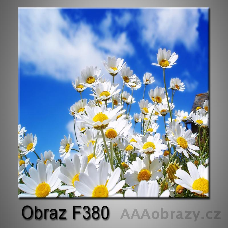 Moderní obraz do bytu 1D 25x25cm F-380