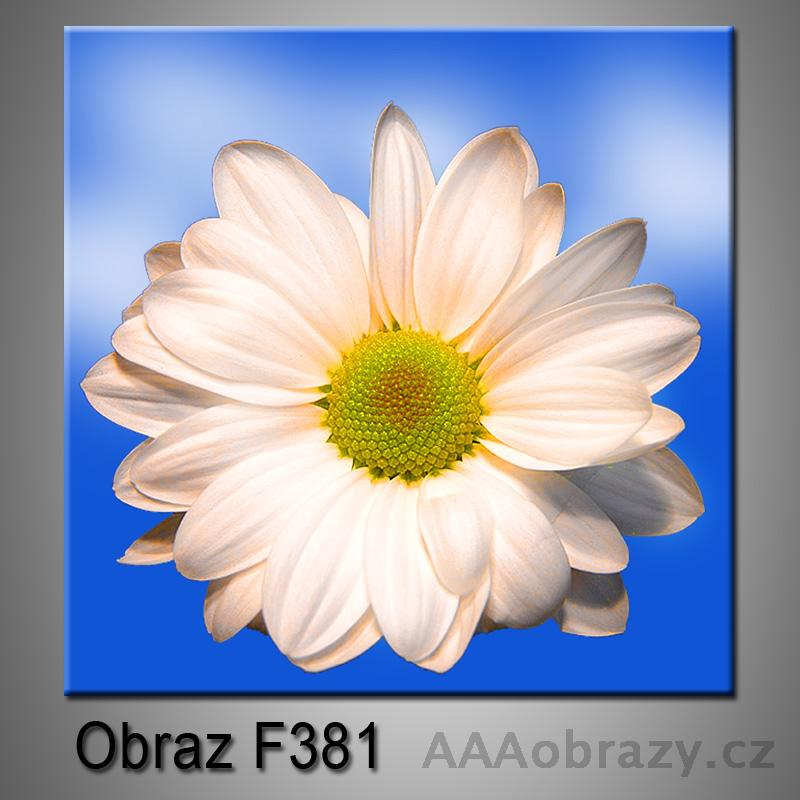 Moderní obraz do bytu 1D 25x25cm F-381