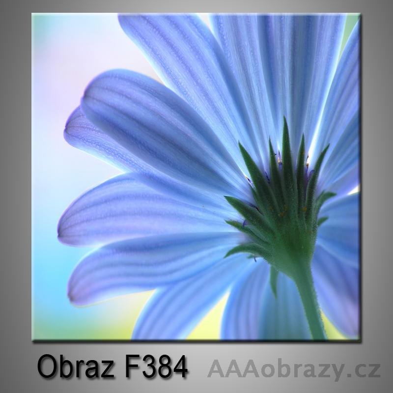 Moderní obraz do bytu 1D 25x25cm F-384