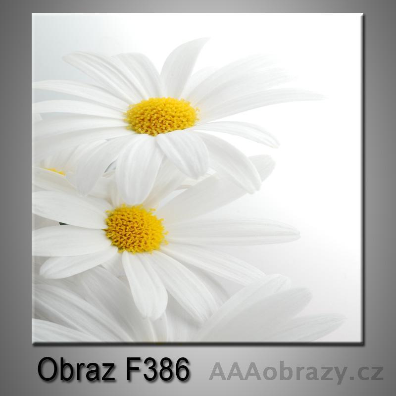 Moderní obraz do bytu 1D 25x25cm F-386