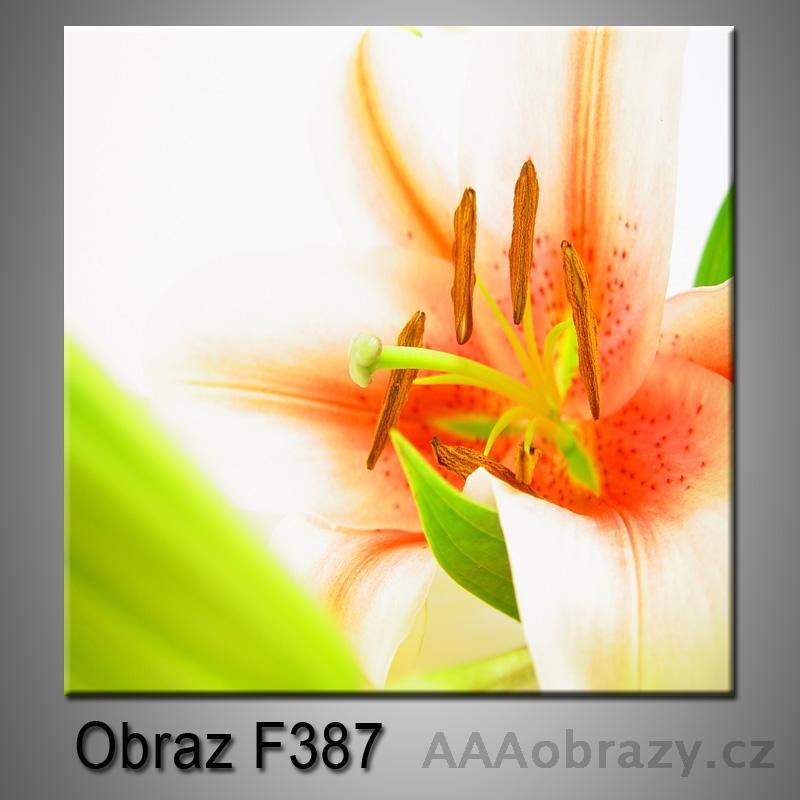 Moderní obraz do bytu 1D 25x25cm F-387