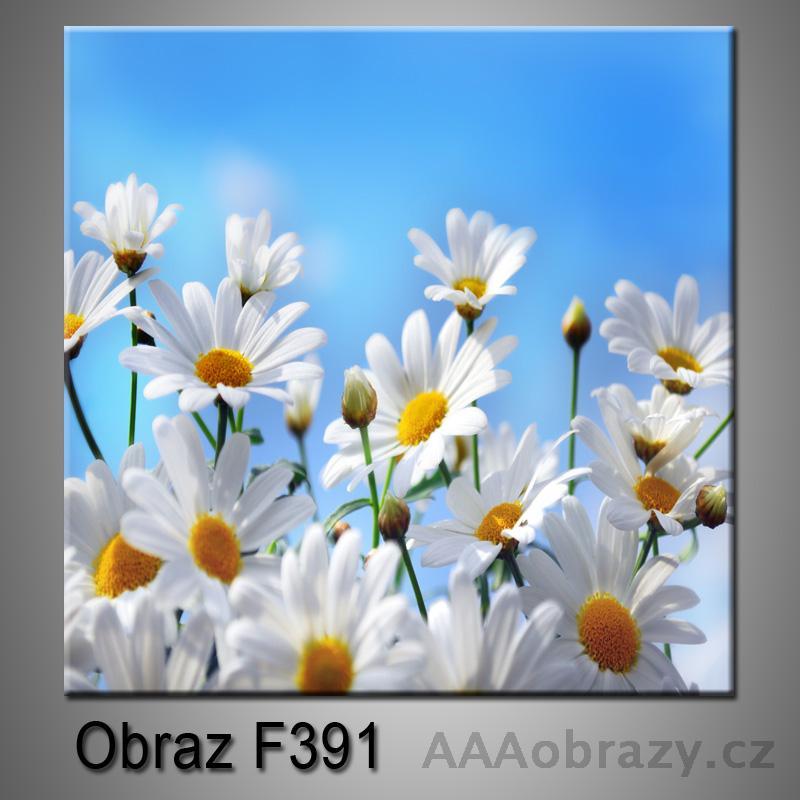 Moderní obraz do bytu 1D 25x25cm F-391