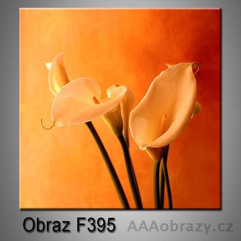 Moderní obraz do bytu 1D 25x25cm F-395