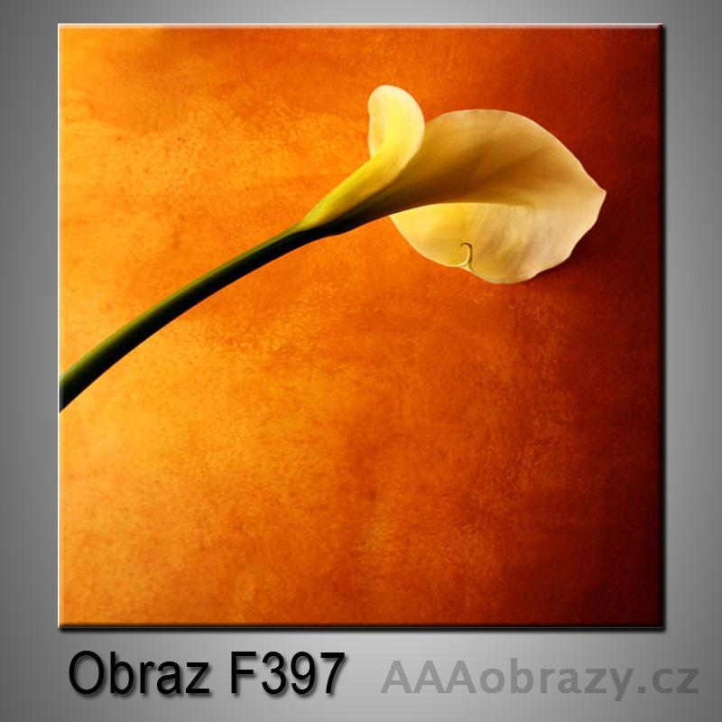 Moderní obraz do bytu 1D 25x25cm F-397