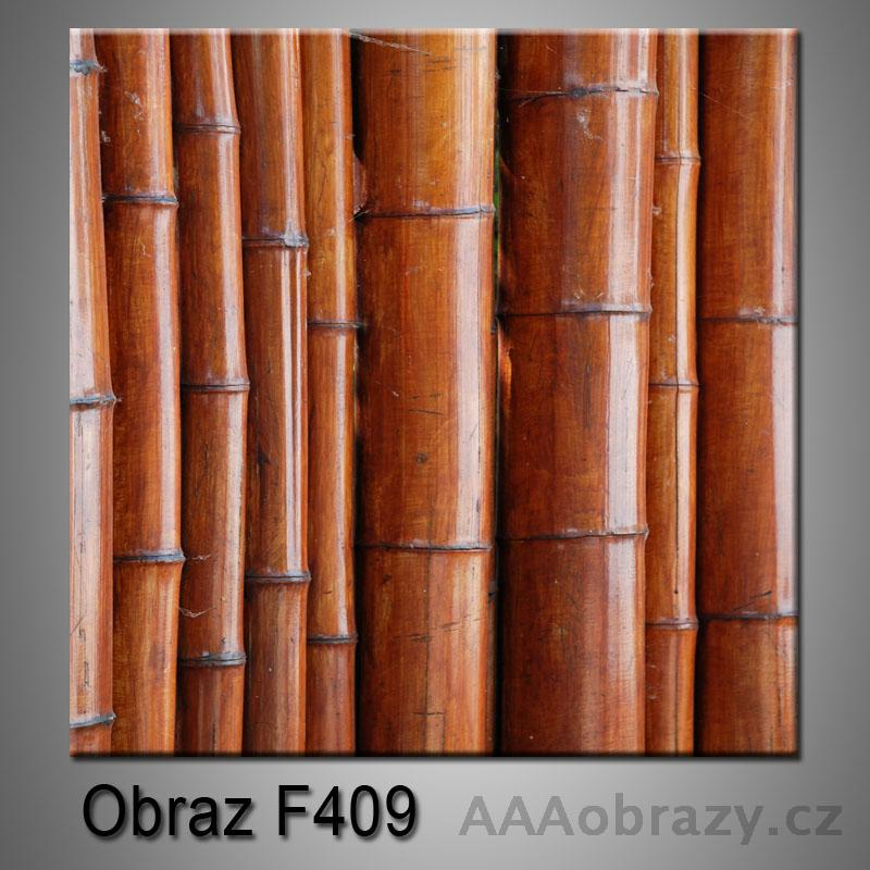 Moderní obraz do bytu 1D 25x25cm F-409