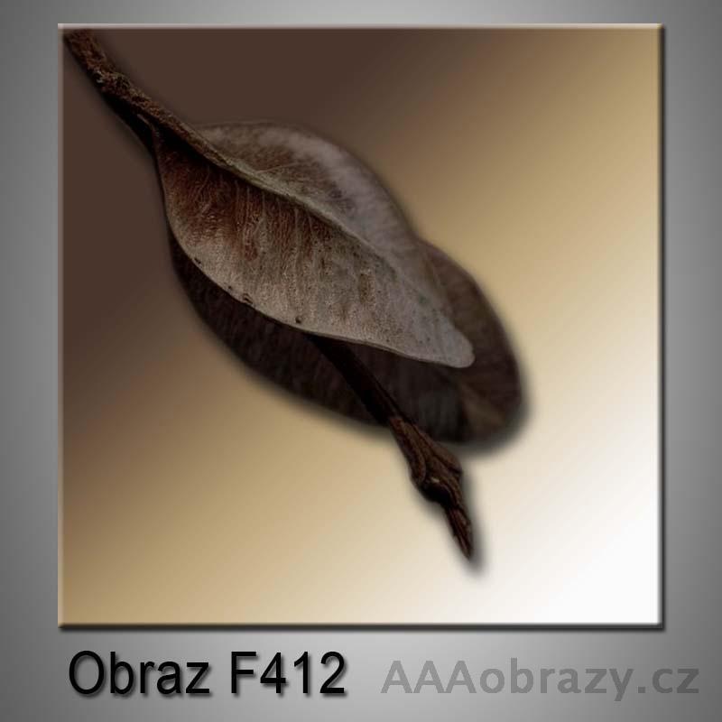 Moderní obraz do bytu 1D 25x25cm F-412