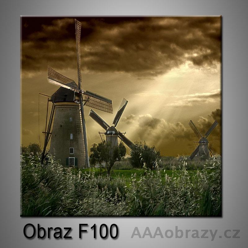 Moderní obraz do bytu 1D 50x50cm F-100