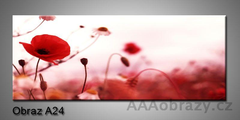 Obraz na plátně 1D 120x50cm Panorama A24