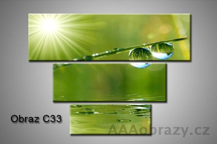 Obraz na plátně 3D100x75cm C33