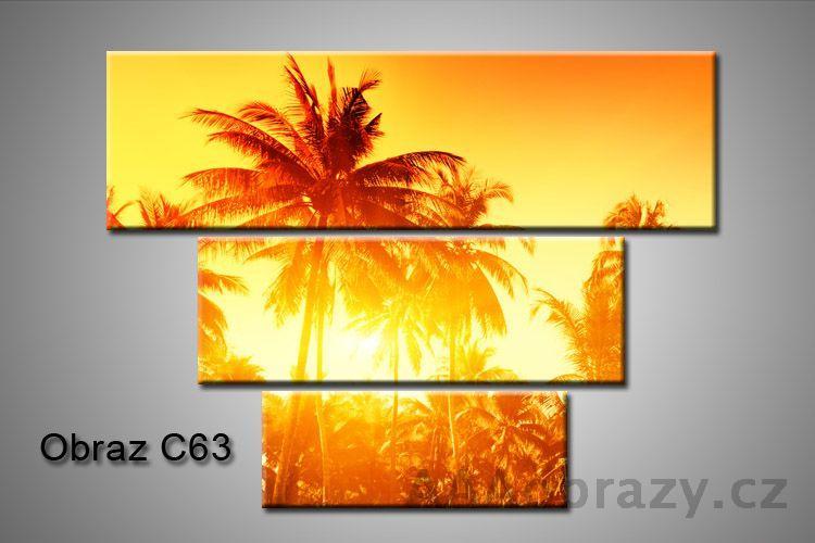Obraz na plátně 3D100x75cm C63