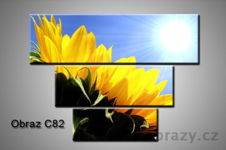 Obraz na plátně 3D100x75cm C82